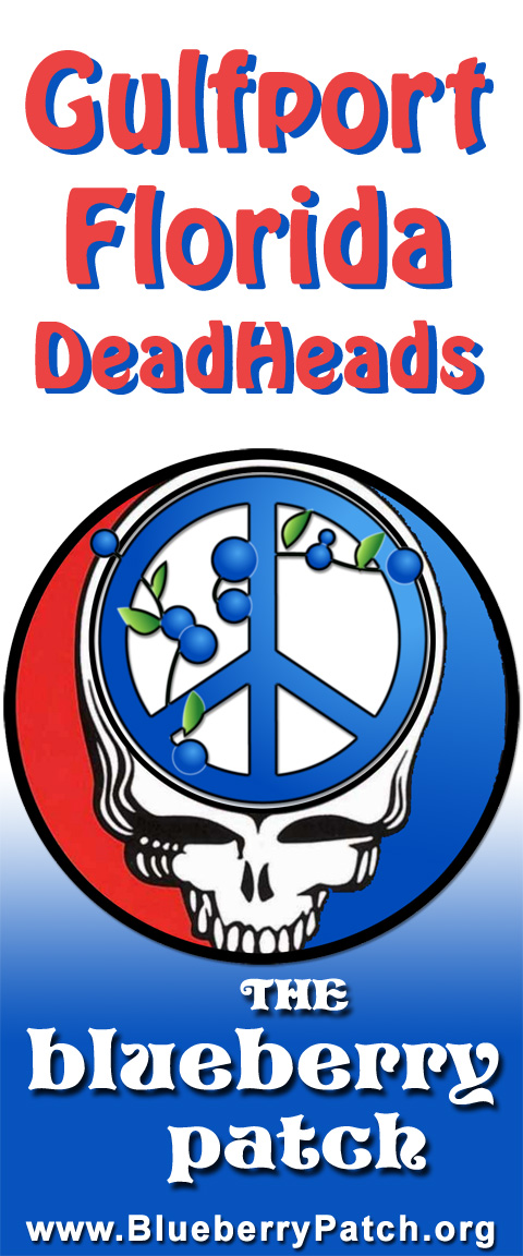 Gulfport Florida DeadHeads
